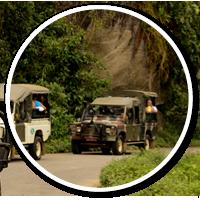 passeio-de-jeep-tour-em-paraty